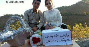 کمک به زلزله زدگان توسط عروس و داماد کرمانشاهی