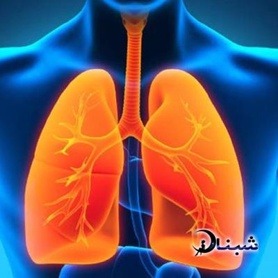 تمیز کردن ریه ها و پاکسازی ریه ها از آلودگی هوا