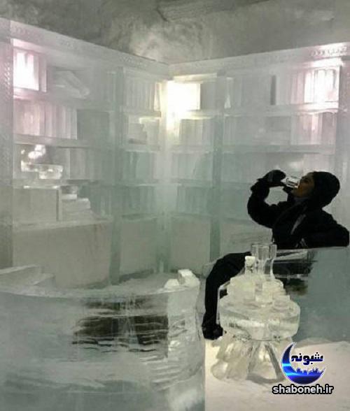 تفریح زمستانی الناز شاکردوست در قطب شمال,عکس الناز شاکردوست