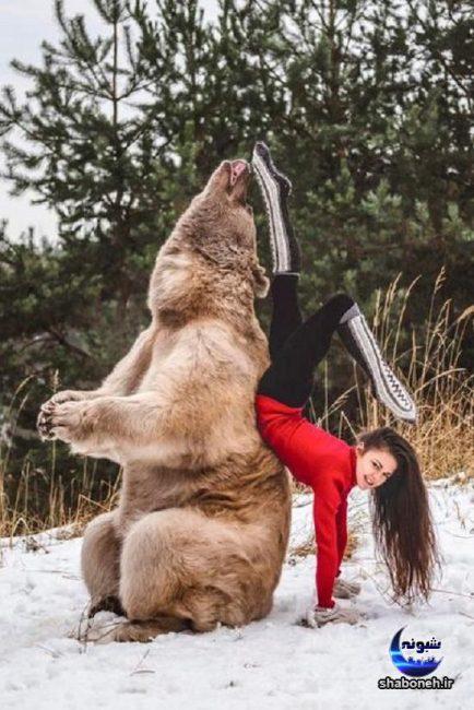 دختر ژیمناستیک کار,رابطه دوستی دختر جوان با یک خرس