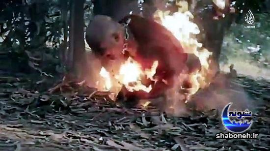 تصاویر وحشتناک آتش زدن خلبان سوری توسط داعش