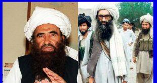 بیوگرافی جلالالدین حقانی + علت مرگ جلالالدین حقانی