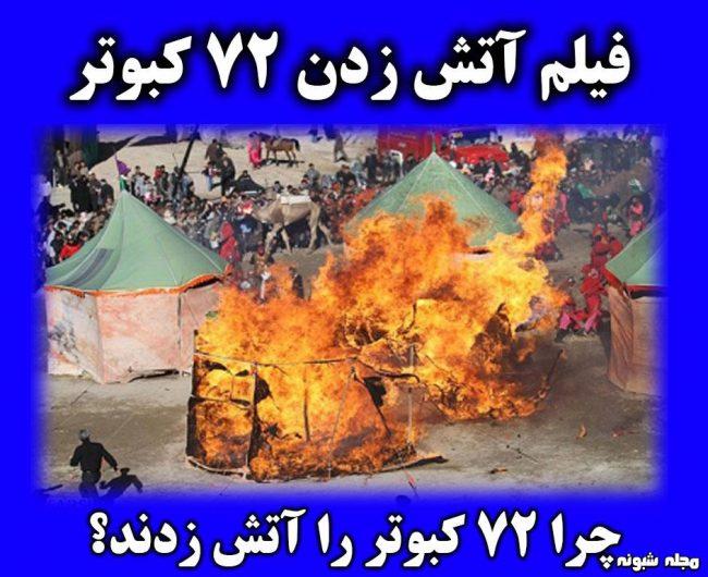 فیلم سوزاندن 72 کبوتر در زنجان + علت و جزئیات
