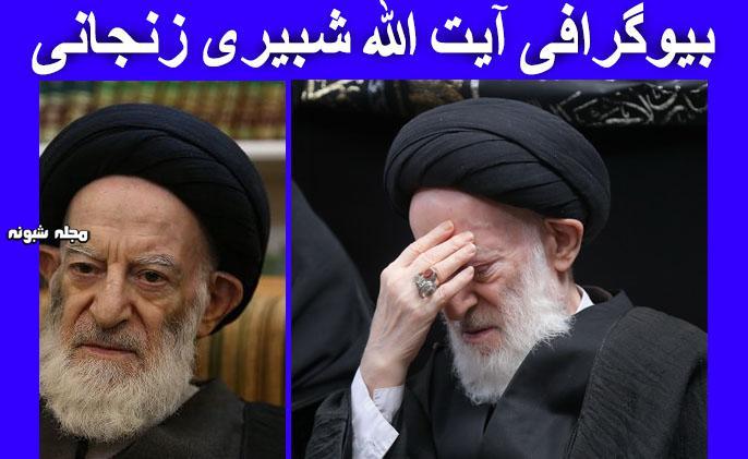 بیوگرافی آیت الله شبیری زنجانی مرجع تقلید شیعه + عکس و فعالیت ها