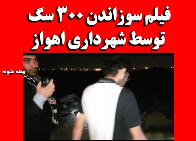 سوزاندن 300 سگ در اهواز (فیلم) + جزئیات سوزاندن سگ توسط شهرداری