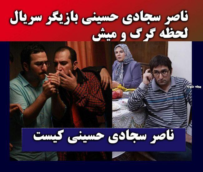 بیوگرافی ناصر سجادی حسینی