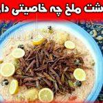 خواص خوردن ملخ + ارزش غذایی ملخ