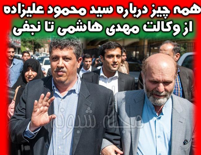 سیدمحمود علیزاده طباطبایی وکیل نجفی و مهدی هاشمی