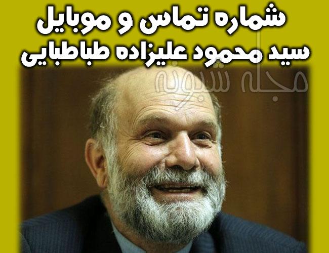سید محمود عليزاده طباطبايي وکيل دادگستري و وکیل نجفی