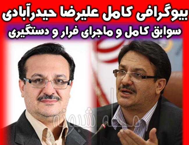 بیوگرافی حیدرآبادی مدیرعامل سابق بانک سرمایه + دستگیری عليرضا حيدرآبادي پور
