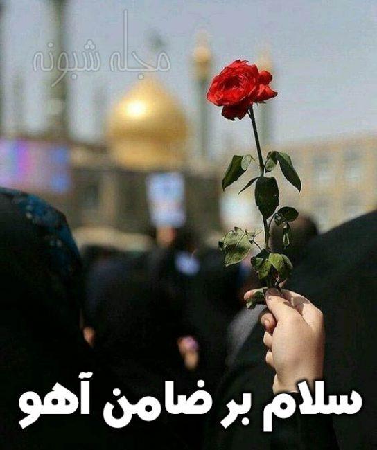 سلام بر ضامن آهو و عکس نوشته امام رضا