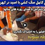 فیلم کشتار سگهای کهریزک با تزریق اسید