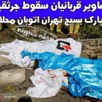 سقوط جرثقیل در پارک بسیج اتوبان محلاتی تهران +فیلم لحظه سقوط
