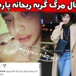 ماجرای گریه ریحانه پارسا برای مرگ گربه اش