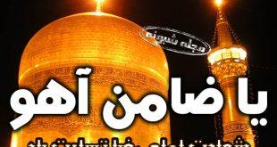 تسلیت شهادت امام رضا و یا ضامن آهو + پروفایل و عکس نوشته و استوری