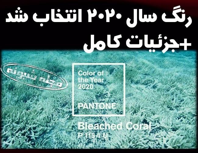 رنگ سال 2020 | رنگ سفید مرجانی (سبز مرجانب) رنگ سال 2020