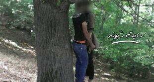 خودکشی دختر و پسر جوان با حلق آویز شدن از درخت +عکس