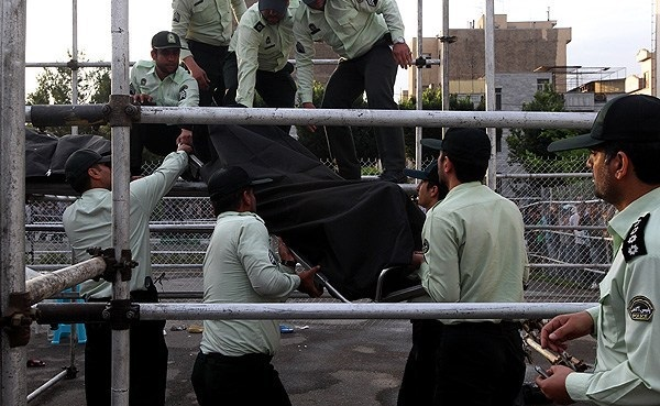 اعدام تمساح خلیج فارس