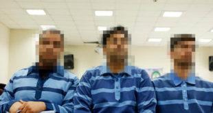 بیوگرافی امیرحسین مرادی و محمد رجبی و سعید تمجیدی