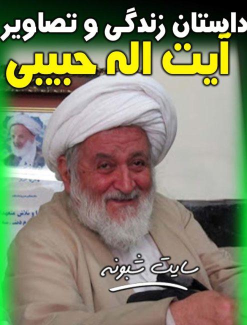 درگذشت آیت الله محسن حبیبی و حجت السلام حبیبی کرونا + بیوگرافی