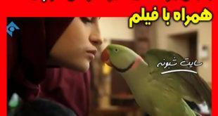 بوسه نیکا (نیکا) بر طوطی در سریال پایتخت 6 جنجال شد +عکس