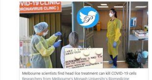 داروی شپش Ivermectin برای درمان کرونا ، کشف محققان استرالیا