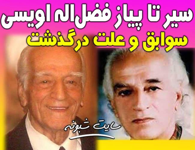 بیوگرافی و درگذشت فضل الله اویسی موسیقیدان پیشکسوت
