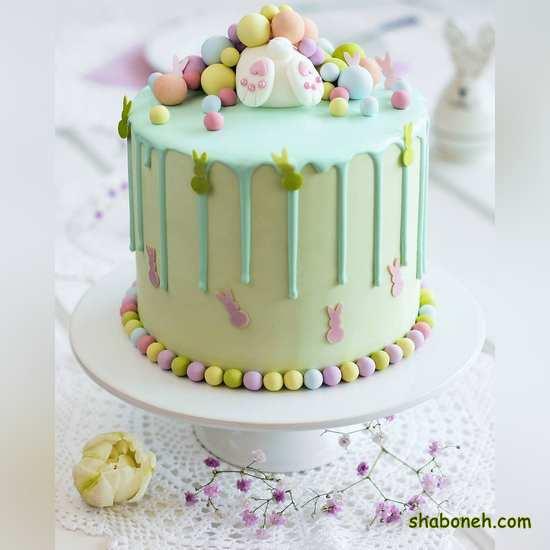 انواع کیکهای تولد خانگی