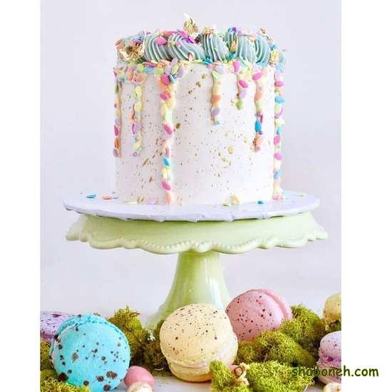 انواع کیکهای زیبای تولد