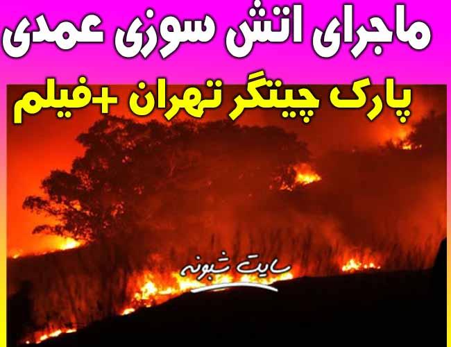 فیلم آتش سوزی در پارک چیتگر تهران دوشنبه 12 خرداد 99
