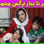 بیوگرافی نرگس محمدی روزنامه نگار و خبرنگار و همسرش +علت دستگیری