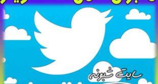 هک توییتر | هکر تویتر کیست؟ درخوات هکر برای بیت کویین