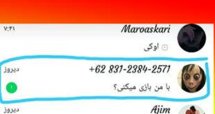 شماره مومو Momo در واتساپ و تلگرام چند است؟