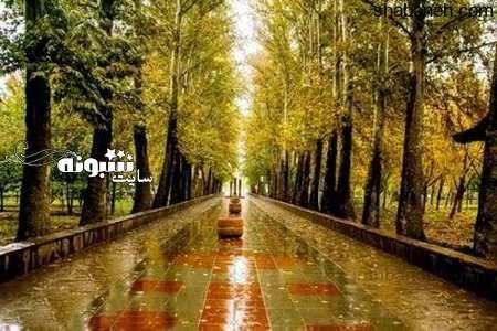 عکس باران برای پروفایل