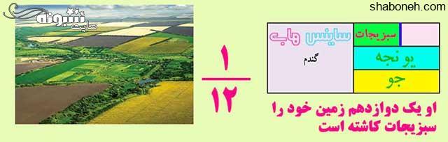 جواب صفحه ۳۸ ریاضی ششم کشاورزی نیمی از زمین خود را گندم کاشت