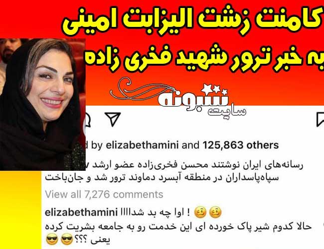 کامنت توهین الیزابت امینی درباره ترور شهید فخری زاده +عکس