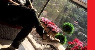 خانه علی انصاریان را ببینید + آدرس خانه لاکچری و زیبا
