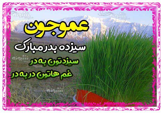 متن تبریک سیزده بدر به عمو و پسرعمو +عکس استیکر 13 بدر مبارک به عمو