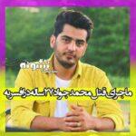 ماجرای قتل محمدجواد گرایی 27 ساله در افسریه (پارک شهید بهشتی نبرد) +عکس