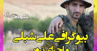 بیوگرافی علی شبلی عضو حزب الله +علت ترور و فیلم کشته شدن