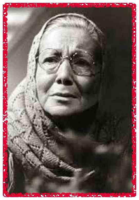 بیوگرافی جمیله شیخی